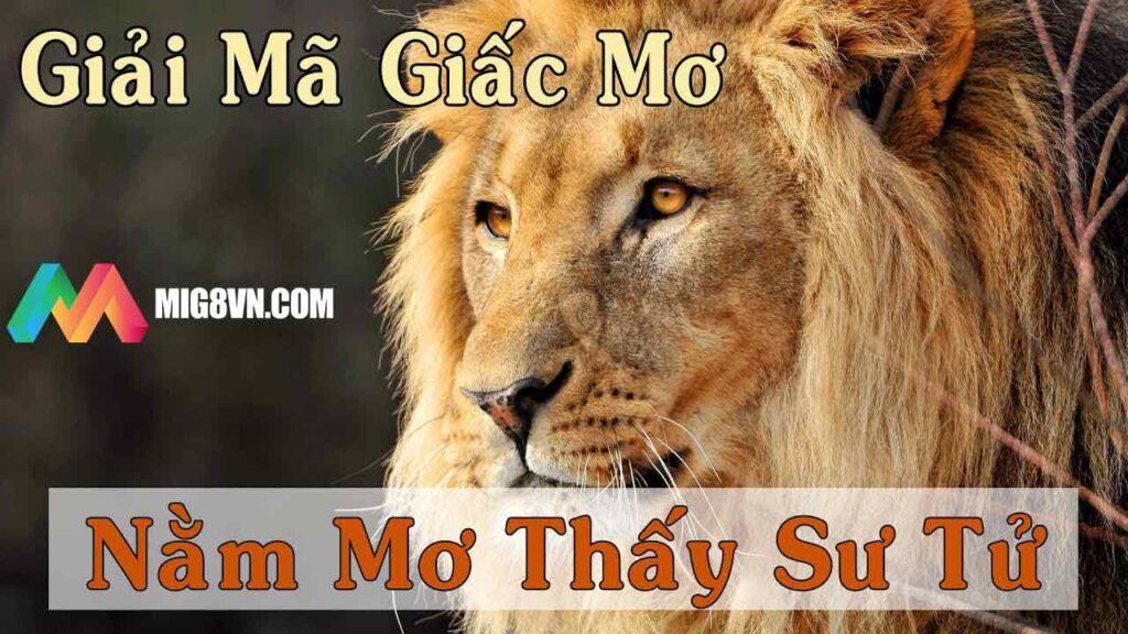 Nằm mơ thấy sư tử