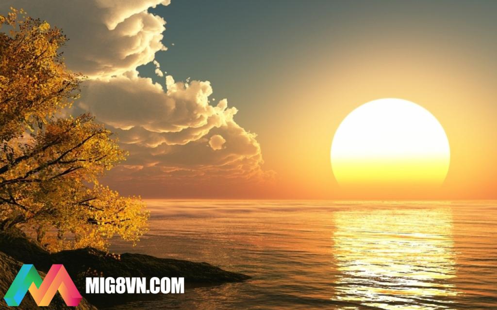 Mơ thấy mặt trời đánh con gì
